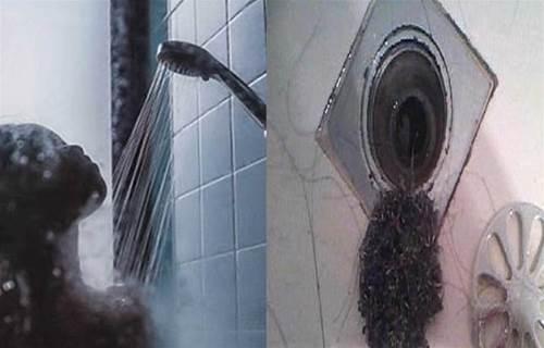 噁!新北一婦人1年洗澡1次,黑癬噁塞排水孔,「堅毅」人夫忍13年崩潰離婚